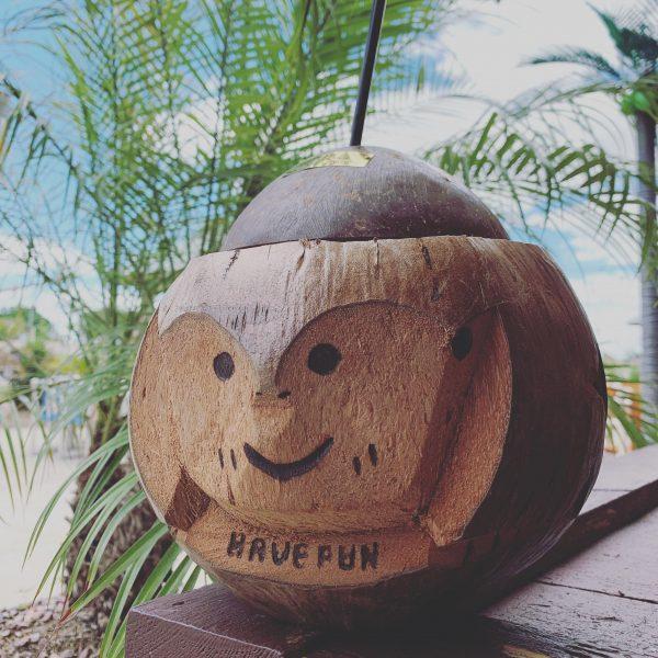 Bobbers Island Grill Souvenir Coconut Monkey Drink Holder